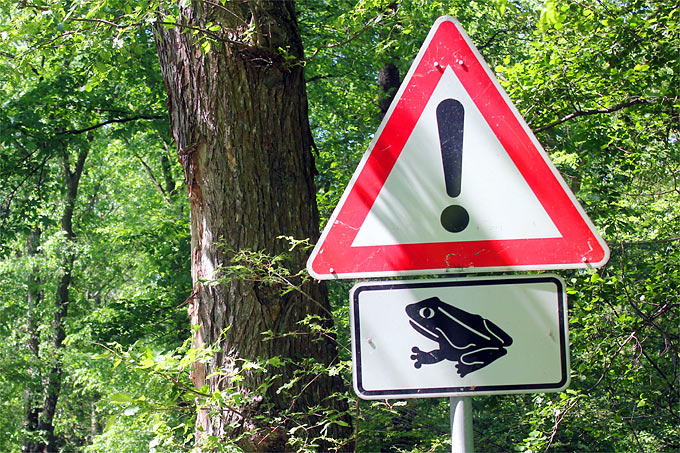 Amphibien-Warnschild - Foto: Helge May