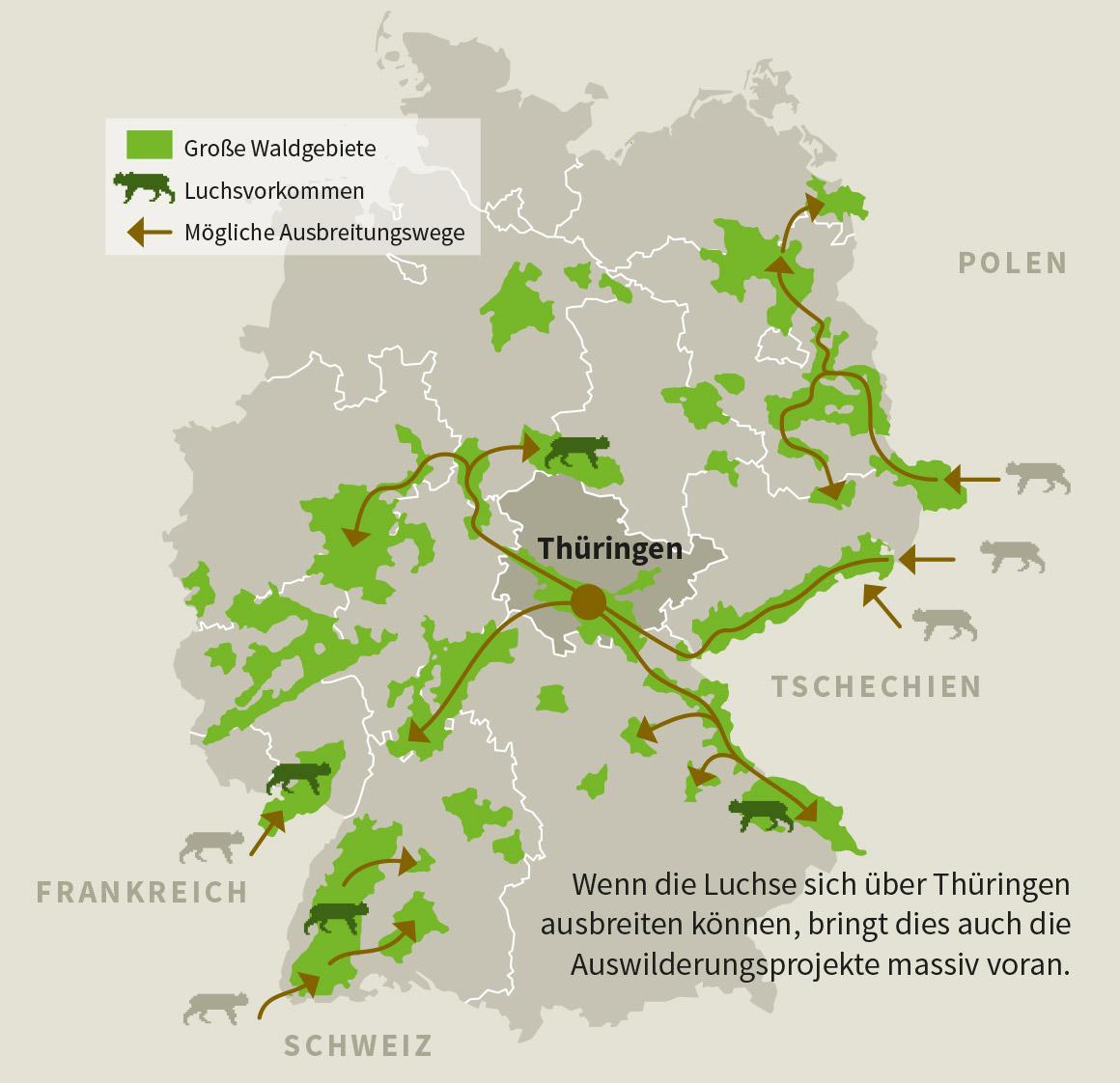 Luchsprojekt Nabu Thuringen